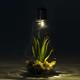 Cactus in Lightbulb