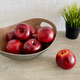 Orchard Faux Fruit Collection by Torre & Tagus
