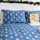 Blue Bears Flannel Sheet Set