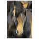Golden Horse Painting by Adlan Kaezar