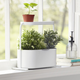 GIARDINO Planter by Umbra