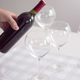 Silhouette Wine Glasses by Rona
