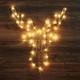 Holiday Hanging LED Lights