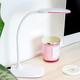 Evelina LED Desk Lamp