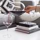Biglass Wine Decanter