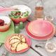 Sanguine Melamine Dinnerware Collection