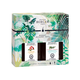 Immersion Duopack Scented Bouquet Refills by Lampe Berger