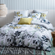 Noli Bedding Collection by Kas