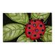Giant LadyBug Doormat