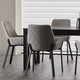 Hiliaria Dining Chair