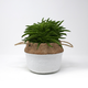 Basket Two-Toned Planter by Natural Living