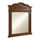 Danville 32 in. Traditional Mirror in Brown
