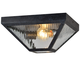 Brian Patrick Flynn For Crystorama Glacier 2 Light Black Charcoal Outdoor Ceiling Mount