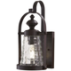 Sycamore Trail 1 Light Outdoor Wall Mount In Dorian Bronze