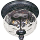Maxim 40429WGOB Carriage House 2-Light Outdoor Ceiling Mount in Oriental Bronze with Water Glass glass.