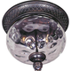 Maxim 3429WGOB Carriage House DC 2-Light Outdoor Ceiling Mount in Oriental Bronze with Water Glass glass.