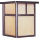 Coldwater EE 1-Light Outdoor Wall Lantern in Burnished w/Honey Shade
