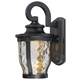 The Great Outdoors 1 Light Wall Mount In Black Finish W/Clear Hammered Glass