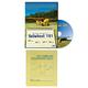 Tailwheel Training Kit