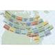 Canadian VFR Navigation Charts