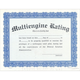 Multi-Engine Rating Certificate