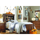 Legacy Classic Kids Big Sur 4 Piece Vista Point Bookcase Bedroom Set in Saddle Brown