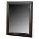 Coaster Phoenix Youth Mirror in Cappuccino 400184