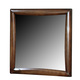 Coaster Hillary Scottsdale Youth Mirror in Chocolate Brown 400284