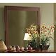 Homelegance Rivera Mirror in Warm Brown Cherry 1440-6