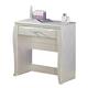 Zarollina Vanity Desk in Silver Pearl Faux Gator B182-22