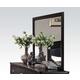 Acme Abram Landscape Mirror in Espresso 21404
