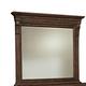 Broyhill Lyla™ Landscape Dresser Mirror in Dak Spice 4912-236