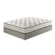 Mount Whitney Plush Queen Mattress in White M89131