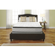 Mount Whitney Pillowtop Twin Mattress and Foundation Set M89211