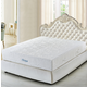 Meridian Furniture Lotus King Mattress