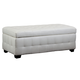 Diamond Sofa Furniture Zen Storage Trunk in White