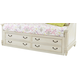 Samuel Lawrence Madison Underbed Storage Unit in Antique White 8890-643