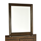Intercon Furniture Jackson Landscape Mirror in Raisin