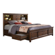 Intercon Furniture Wolf Creek Queen Bookcase Bed with Storage in Vintage Acacia