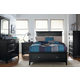 Standard Furniture Cooperstown Storage Bedroom Set in Black