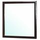Coaster Palmetto Mirror in Cappuccino 203554