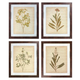 Dyani 4pc Wall Art Set in Multi A8000198