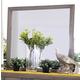Furniture of America Berenice Mirror in Light Oak CM7580A-M