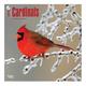 Cardinal Wall Calendar, One Size