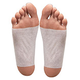 Himalayan Salt Foot Detox Patches - Set of 10