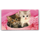 Personalized Kitten 2 Year Pocket Planner, One Size