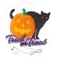 Trick or Treat Black Cat Shimmer Light, One Size