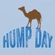 Hump Day T-Shirt - Light Blue, Large
