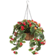 Fully Assembled Begonia Hanging Basket by OakRidge™, One Size