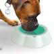 Frosty Pet Bowl, One Size